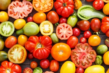 Do you distinguish yourself in the field of tomato experience: taste, shape and colour?
